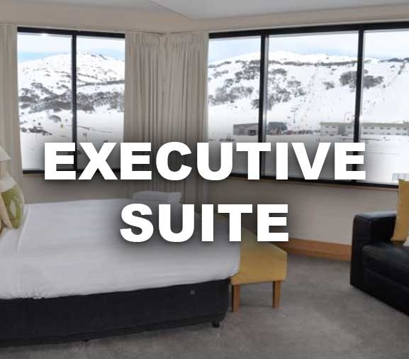 Executive Option